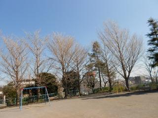 s-DSCN2110.jpg
