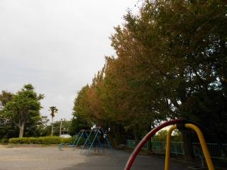 s-DSCN3996.jpg