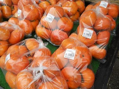 コピー ~ 野菜 022