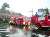 2013_sakura_bangai3.jpg