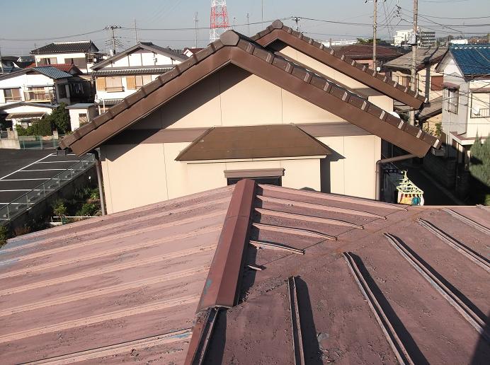 屋根だー!