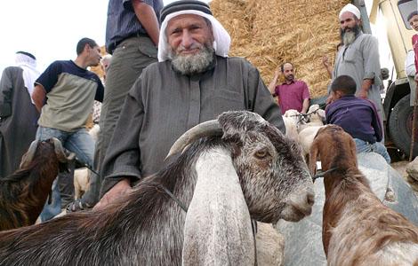ベツレヘムの羊マーケット