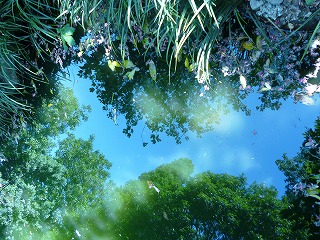s-130507池に映る森Ⅱ