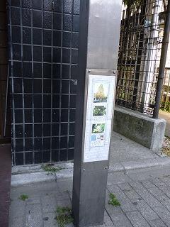 s-20130509街路灯植物図鑑