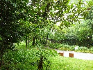 s-20130520小雨の公園Ⅱ