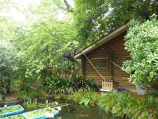 s-20130520ログハウスと池