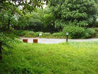 s-20130520池前広場