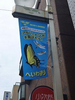 s-P1030862旗