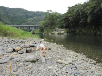 川遊び(祝子 001