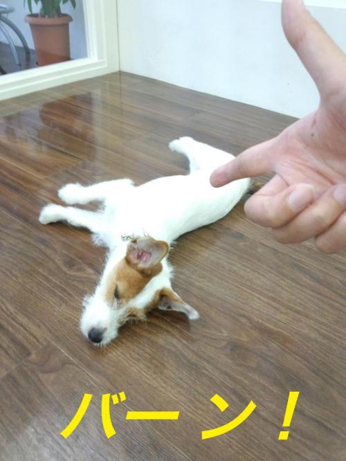 繝舌・繝ウ_convert_20120917135630