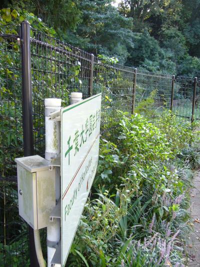 千葉大学2_convert_20130921022546