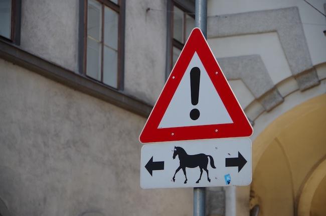 スペイン乗馬学校