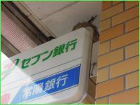 20120602-145600.jpg