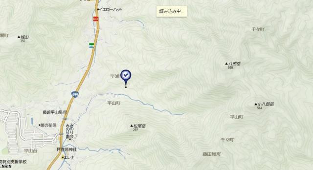 tizu8889.jpg