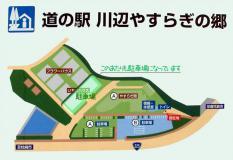 kawanabe1.jpg