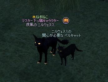 hellcat1.jpg