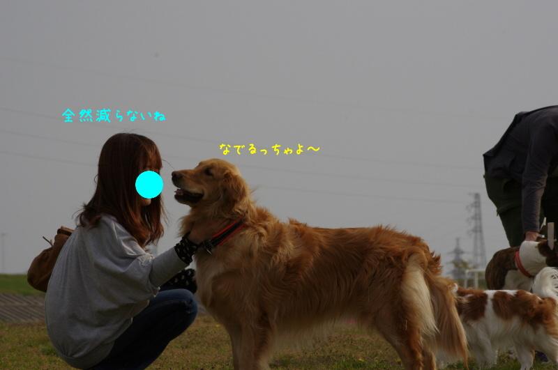 IMGP5570.jpg
