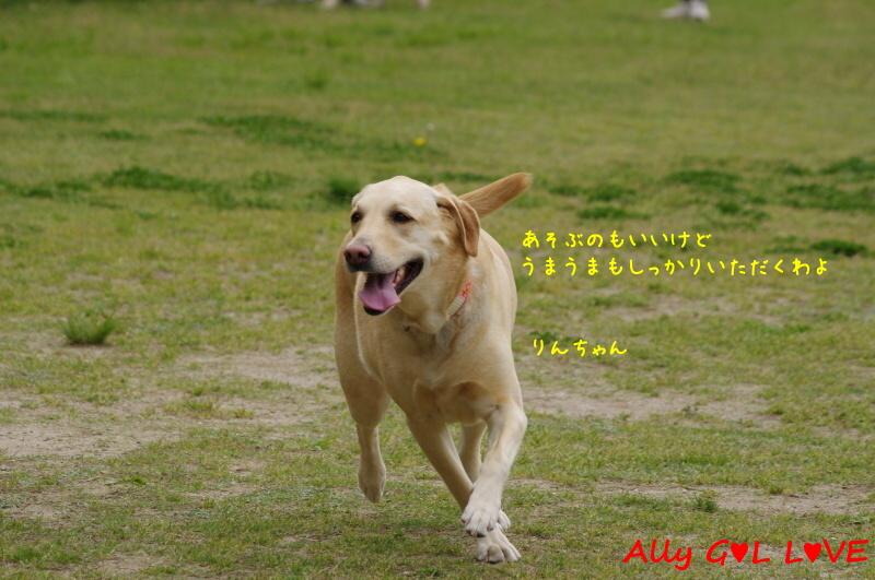 IMGP5635.jpg