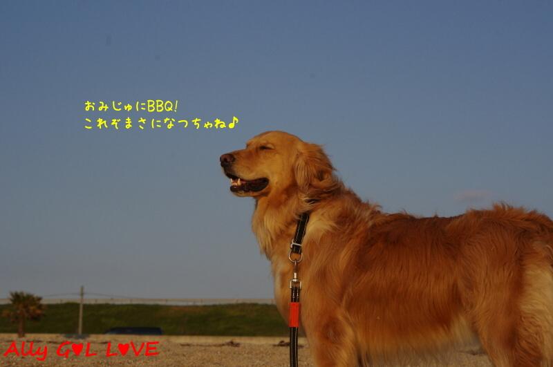 IMGP6493.jpg