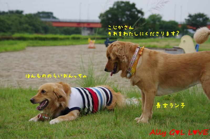 IMGP8168.jpg