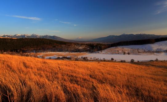 草原上に南アルプス、八ヶ岳と霊峰富士