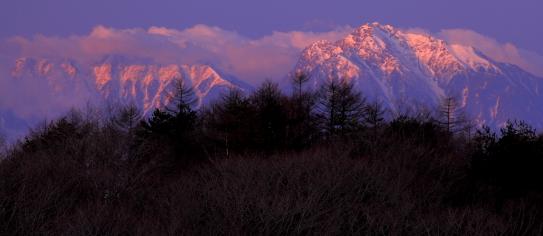 バラ色に染まる甲斐駒ヶ岳