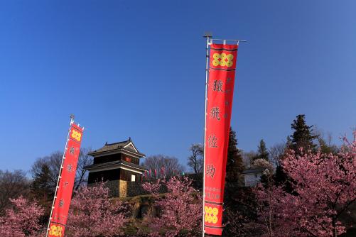 桜祭りの幟