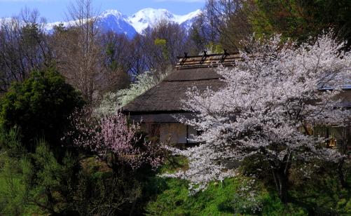 民家のある山里の春
