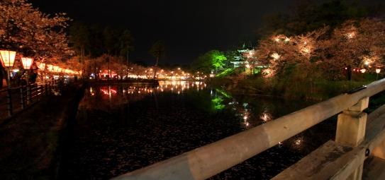 堀をめぐらす桜の夜景