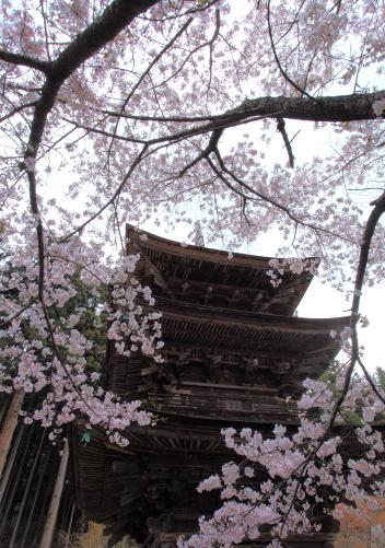 新海三社神社の三重塔
