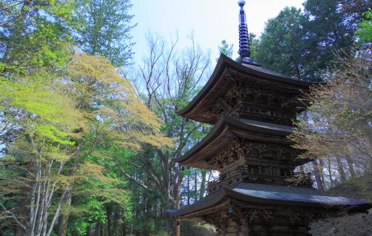 佐久を代表する古刹・貞祥寺の三重塔