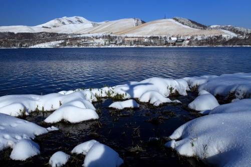 冠雪の白樺湖と車山