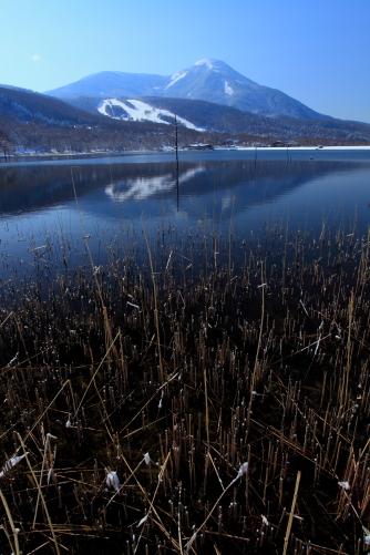 女神湖から見る蓼科山