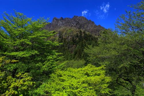 若葉の彩る岩の殿堂