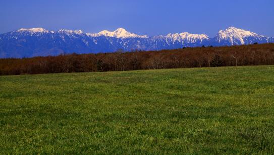 草原に浮かぶ南アルプス
