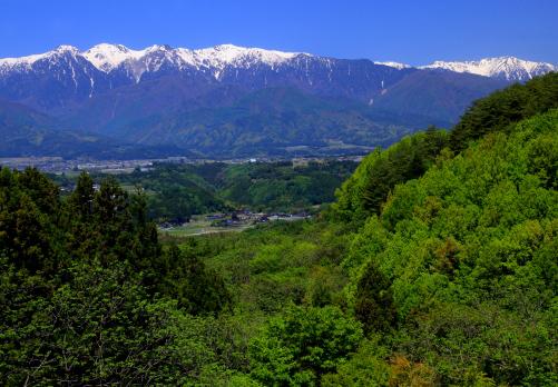 中川村から望む残雪の西駒ヶ岳