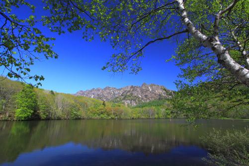戸隠の鏡池に映える白樺と西岳