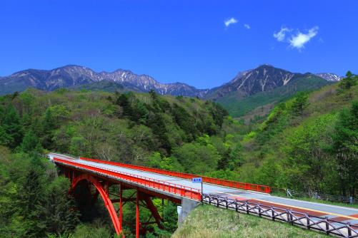 若葉をまとう東沢の森と赤岳・権現岳