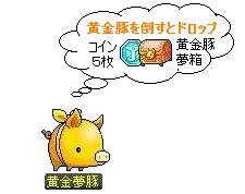 黄金豚夢箱
