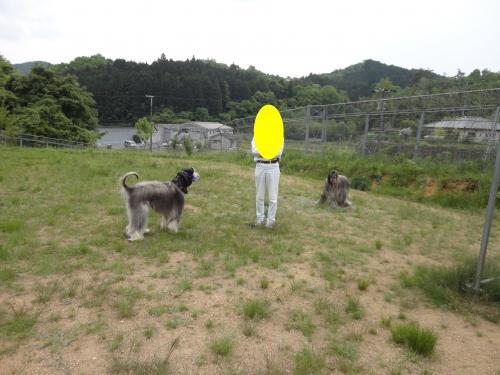 nnn_convert_20120521232246.jpg
