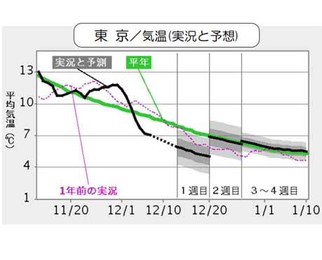 東京の気温