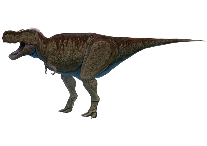 ティラノサウルス b3 burogu