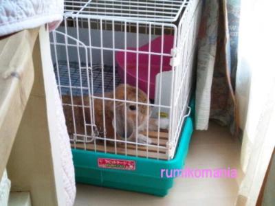 CA2VFMIH_convert_20120727144640.jpg