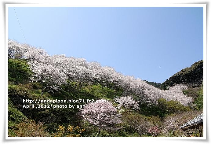 20120401_9958.jpg