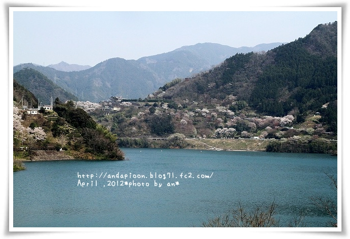 20120408_6046.jpg