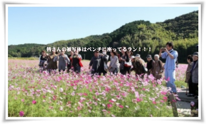 20121019_2440a.jpg