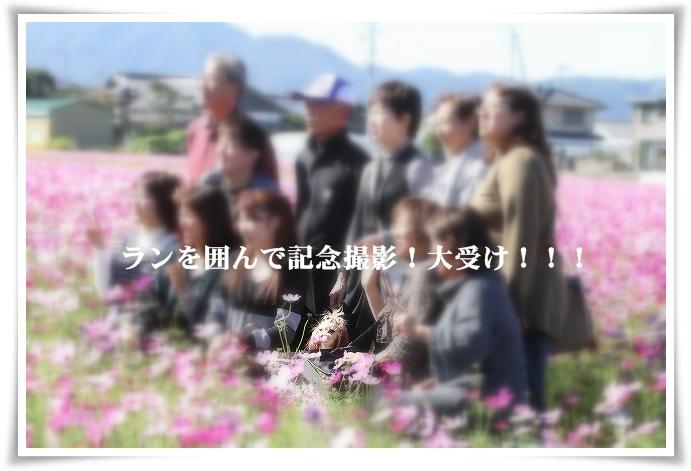 20121019_2459a.jpg
