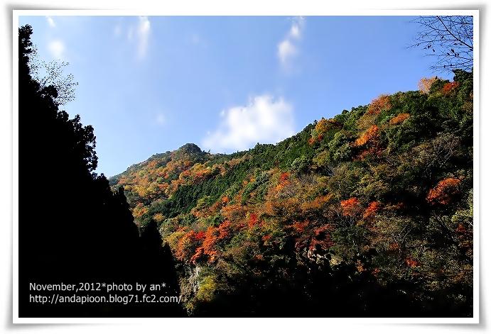 20121112_6907.jpg