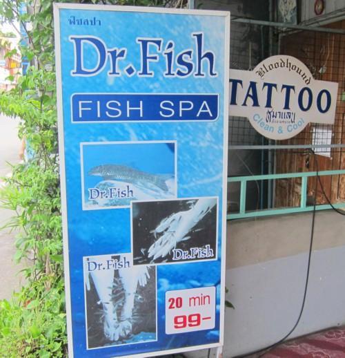Chiang mai06281212
