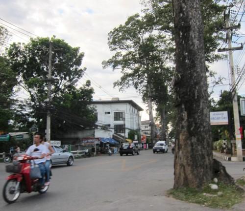 Chiang mai06301225